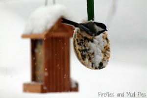 ice-ornament