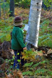 nature-walks-with-children-2