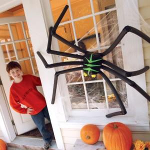 spooky-spider-halloween-craft-photo-420-FF1005TRICKA01