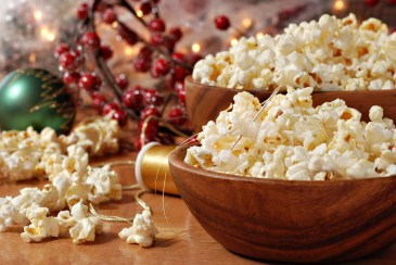 homemade_popcorn_cranberry_garland_H